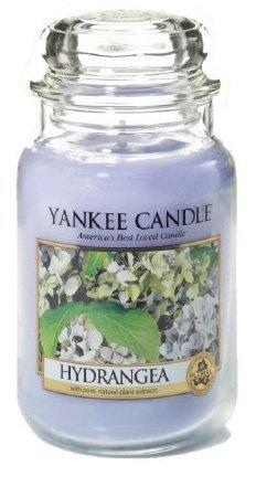 Yankee Candle Hydrangea (1)