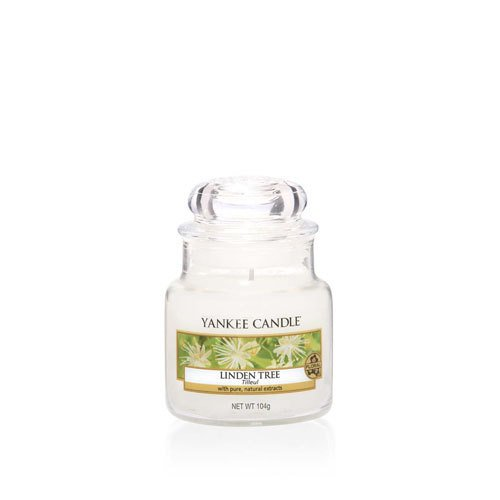 Yankee Candle Linden tree (5)