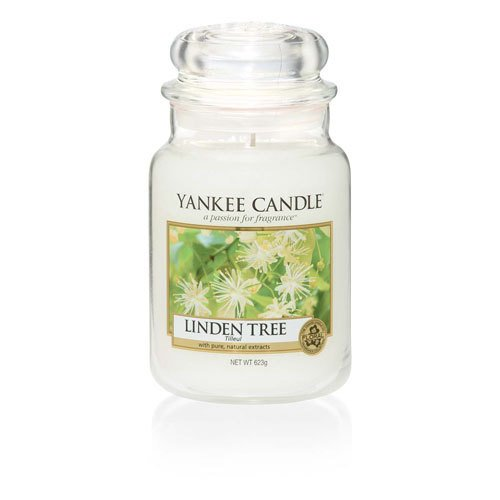 Yankee Candle Linden tree (4)