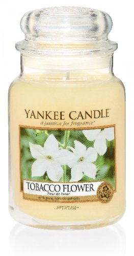 Yankee Candle Tobacco flower (3)