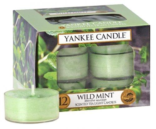 Yankee Candle Wild mint (6)