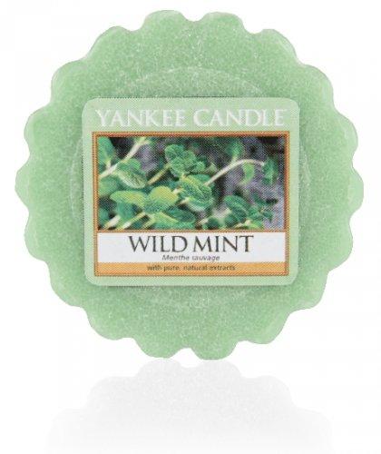Yankee Candle Wild mint (3)