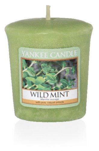 Yankee Candle Wild mint (2)