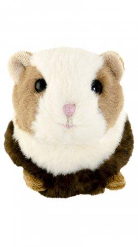 Morče Piggy (10 cm) (1)