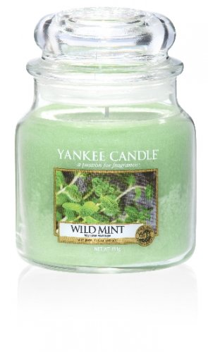 Yankee Candle Wild mint DOPRODEJ (1)