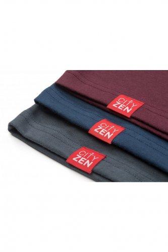 Pánské bavlněné tričko CITY ZEN černé (3)