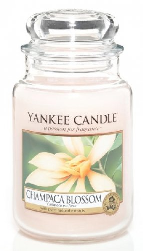 Yankee Candle Champaca blossom DOPRODEJ (5)