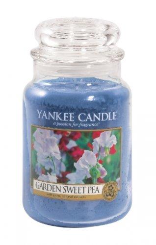 Yankee Candle Garden sweet pea (4)